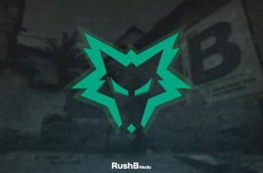 Dire Wolves organization logo